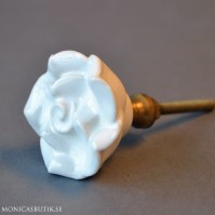 Knopp White Rose