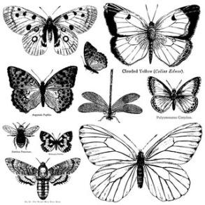 IOD Dekorstämpel Butterflies