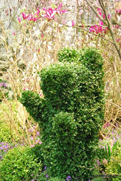 Buxbom (Topiary/Animals)