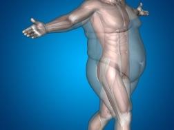 ketogen kost är överlägsen andra typer av kosthållning när det gäller att gå ner i vikt och behålla sin idelalvikt.