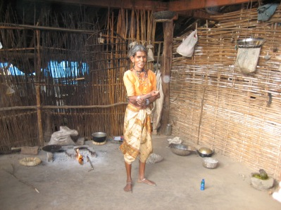 Typiska hem för byborna uppe i Dharampurs bergstrakter 2010.
