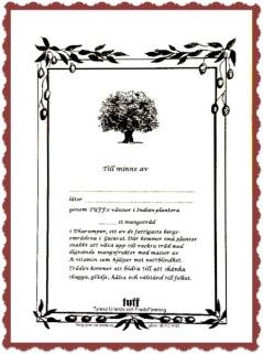 """Mangogram till stöd för TUFF:s mangoprojekt kan köpas i olika versioner. En planta kostar 10 kr. Se vidare info under fliken """"Kontakt/ Mangogram""""."""