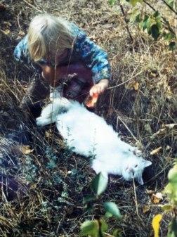 Kerstin pysslar om den blinda katten på Öland.