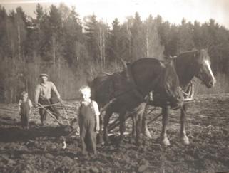 Plöjningsdags. Pappa Ragnar med sönerna Kjell och Curt.