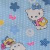 Hello Kitty extra