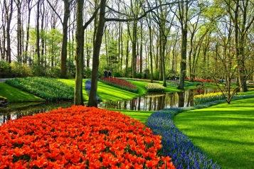 """När vi nu går igenom en ny vår, och blommans skönhet kallar på vår uppmärksamhet, kan vi höra dem säga: """"Tack för att du ser min skönhet. Jag älskar dig också."""""""