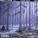 Månsken i skogen