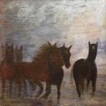 Häster i gallop