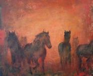 Hästar i solnedgång.