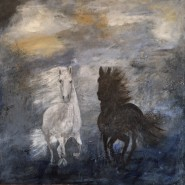 vit o svart häst