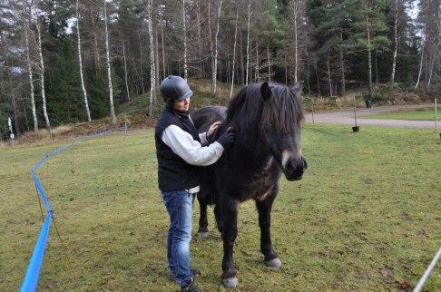 Hästen berör oss, gör oss uppmärksamma att vara i nuet, att bara vara tillsammans och umgås, borsta och beröra varsamt.