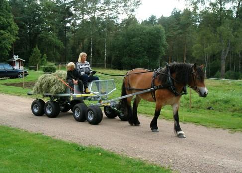 Skallinge Gårds Skogsvagn med flak