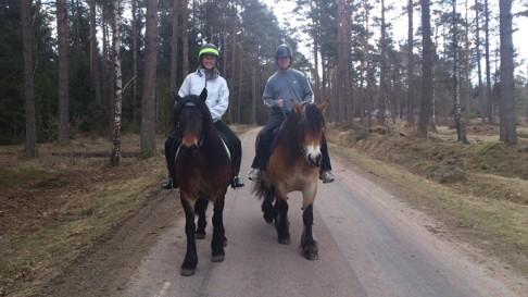 Stellan och Kattis, ett härligt  par från Halmstad, glada och nöjda efter en ridtur på Liiv och Fanny.