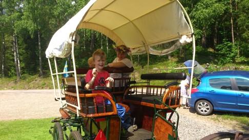 För barnen fungerade vagnen lika bra utan  Skallinge gårds hästar.