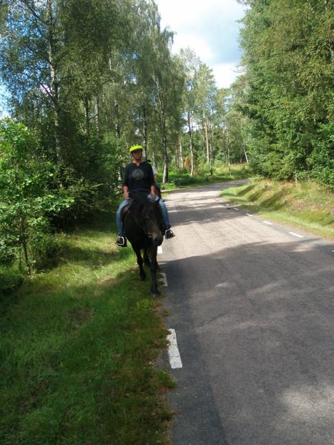 Turridning i natursköna Simlångsdalen