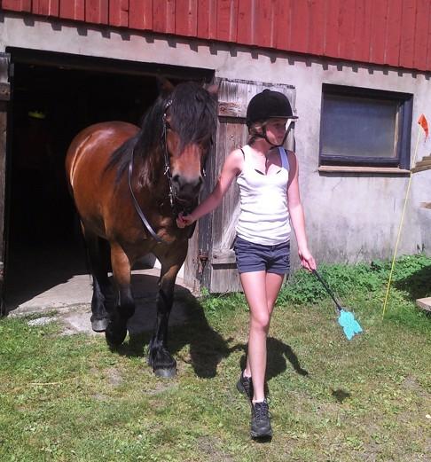 Bra på huvud och fötter och med en flugsmäck i handen är Tess och Nordsvenska Fanny redo för en ridtur en varm och skön sommardag.