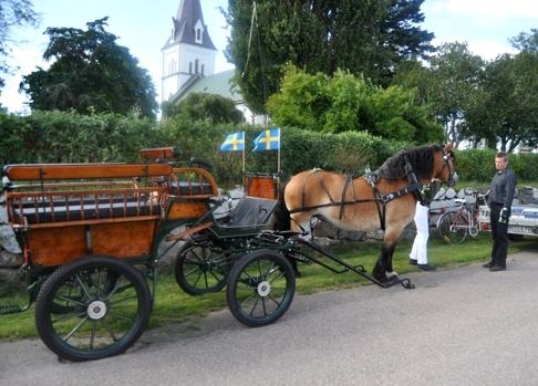 Äntligen dags efter förberedelser;  val av säker väg, tvätt av häst, putsning av sele och vagn.