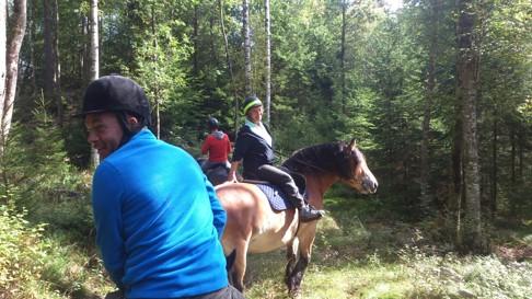 Turridning Nordsvensk brukshäst Skallinge Gård CAHOM