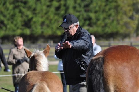 Alla åskådare fick ta del av praktisk föreläsning i exteriör. Morgan Johnsson förklarar på ett förnämligt sätt så man förstår. Men så är Morgan väl rutinerad och har bedömt häst i väldigt många år.