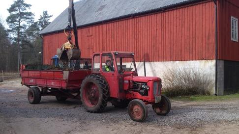Gödseln ska lastas på gödselspridaren innan den körs ut på åkern på Skallinge Gård.