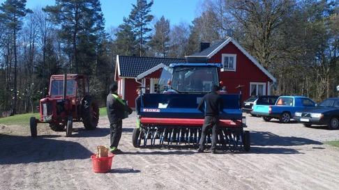 I med gräsfröna i sålådan bli ny fin gräsvall för hästarna på Skallinge Gård