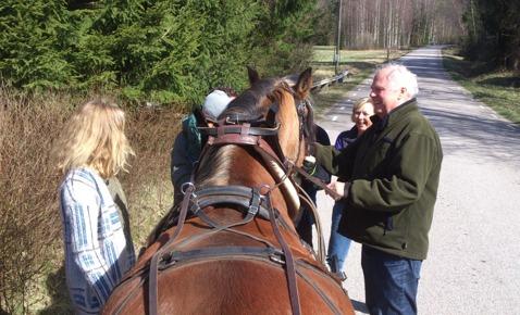 Följ med på en tur med häst och vagn i natursköna Simlångsdalen!