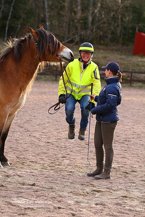 Det här med att ställa upp hästen... det var inte detta rådet jag fick av Jenny men hon sträckte på halsen och Thomas fångade ögonblicket!