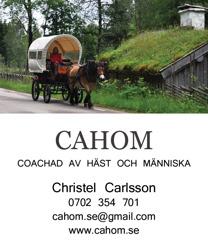 Häst & vagn för bröllop, turister, fest & högtider i Halmstad