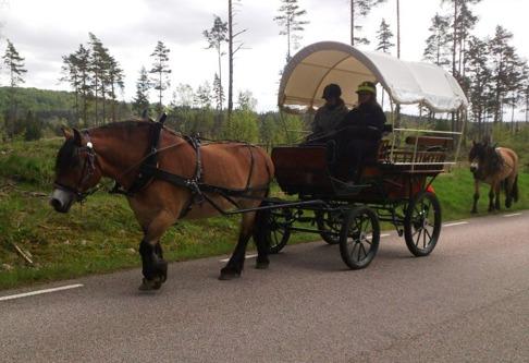 Agneta provar på att köra Liiv