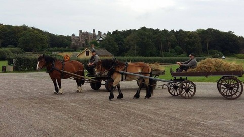 Ardennerstoet Molly och Nordsvenska brukshästen Valle arbetade i söndags på Tjolöholms slott.