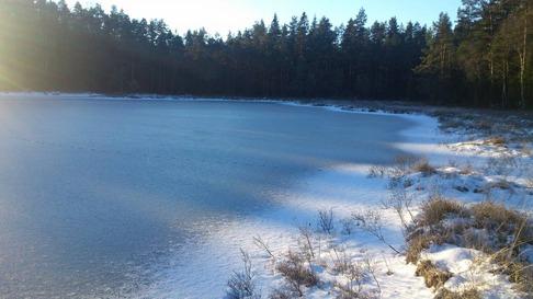 Räven raskat över isen... nu har sjön fryst till vid vår stuga i Simlångsdalen