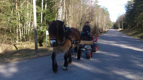 Liiv bjuder på en tur med skogsvagnen!