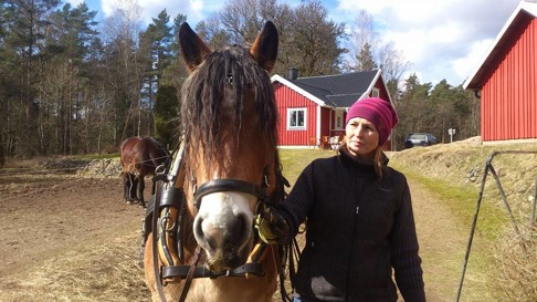 Ja kankse en sådan här häst skulle jag ha!  Liiv och Matilda
