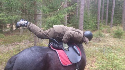 Styrketräning på hästryggen... endast för rutinerade och superstarka ryttare!