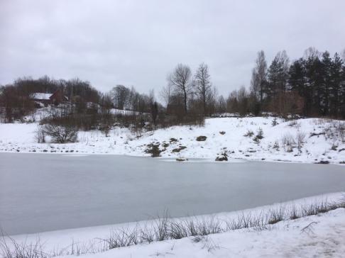 På slingrande byvägar förbi den frusna dammen och nerför elva liar, vägen som förr var huvudväg till Halmstad. Mer om det kan man få höra på kultur och naturvandringen.