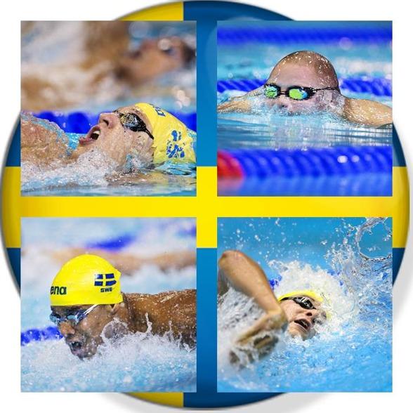 Svenska herrlaget i medley som slogs ut i dagens försökstävlingar - Mattias Carlsson - Erik Persson - Simon Sjödin - Christoffer Carlsen