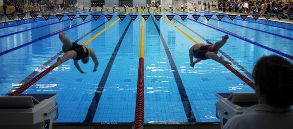 Bertrand och Hippi på 200m medley