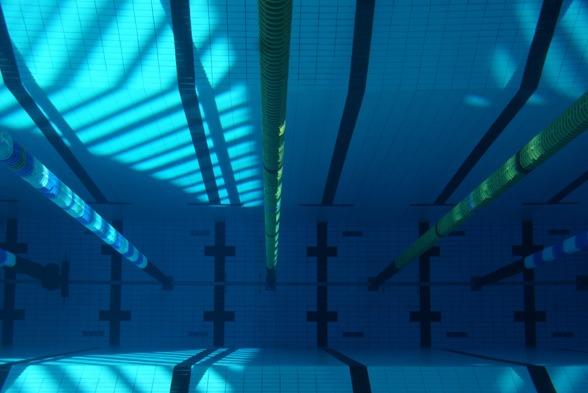 Så här expeptionellt rent och fint är det under ytan i Sporthallsbadet