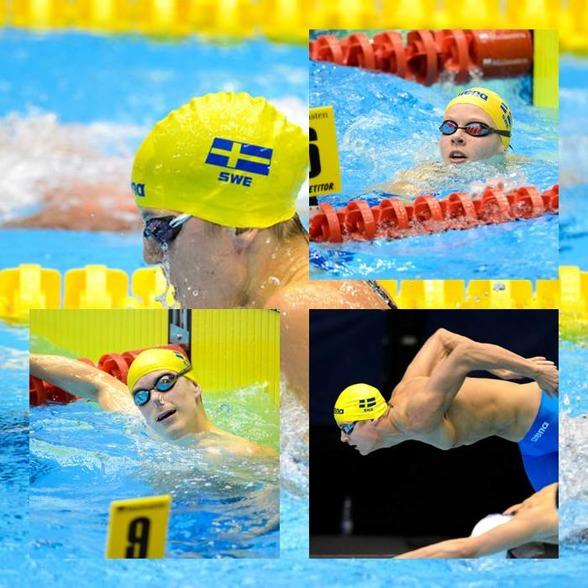 Borin, Carlsen och Hansson - simmade klart efter semifinalen idag men Stina Gardell  (stora bilden) vidare till final i morgon på 100m medley.