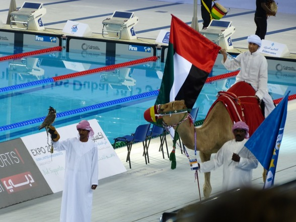 Invigning av Junior-VM - ordet kameler har här fått en riktigare betydelse än tidigare - i en simhall....