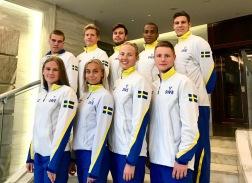 Svenska truppen (klicka på bilden)