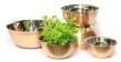 Set/5 skålar i ädelmetall - Bowls - Copper - Brushed
