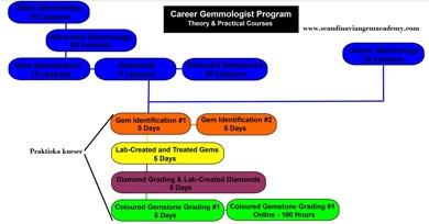 Klicka på bilden för att tydligare se vilka moduler som ingår i Career Gemmology programmet.