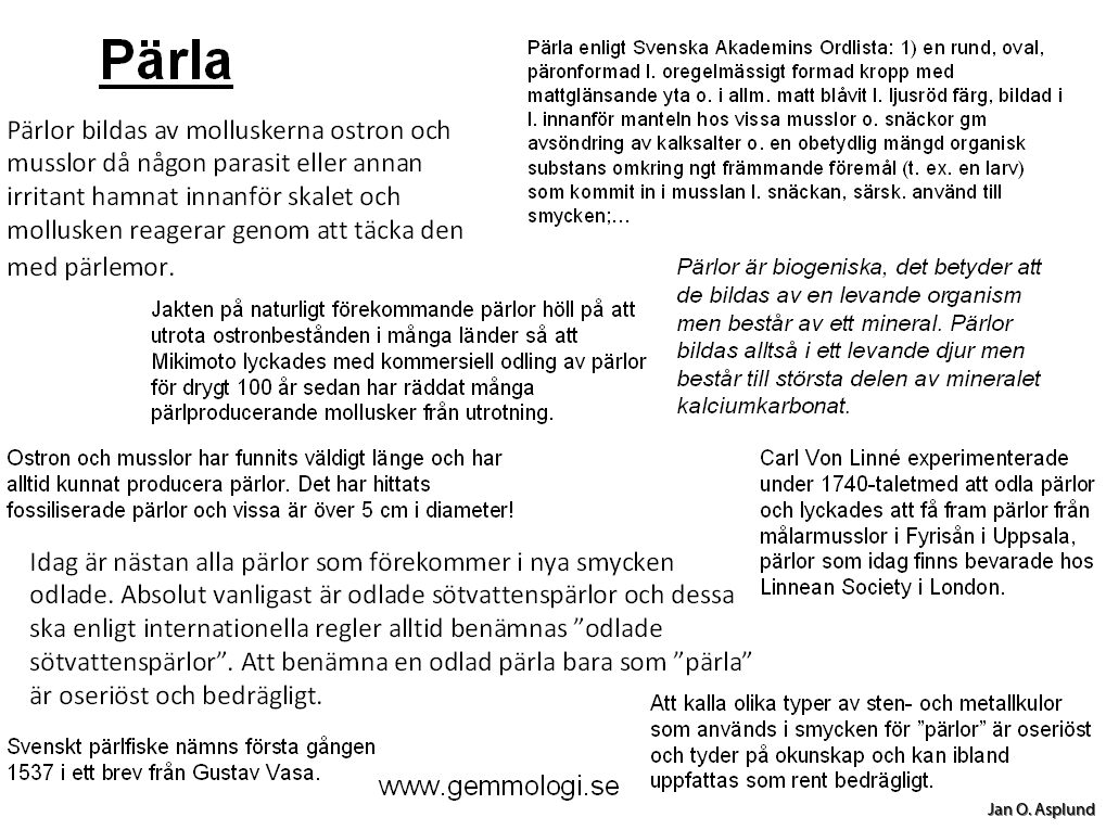 Svenska ostron far akademi