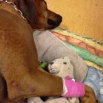Esther trött efter besöket , älskar dig <3