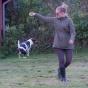 Abbe hoppar jämnfota