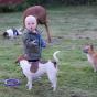Vidar leker med hundarna