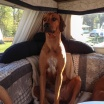 Esther firar valborg i husvagn