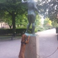 stå staty