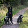 Änzo, Max o Leo
